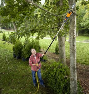 Black & Decker LPP120 Cordless Pole Saw Review