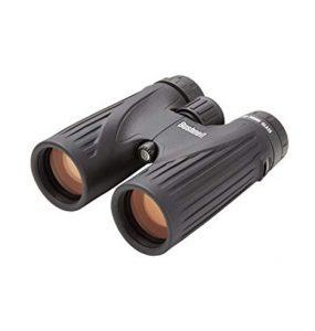 Bushnell Legend Ultra HD 10x42mm Roof Prism Binoculars Review