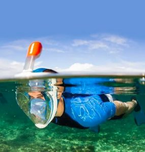 Best Full Face Snorkel Mask Reviews